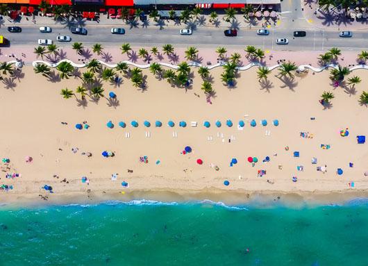 Florida Sunshine / Sunshine & Baden